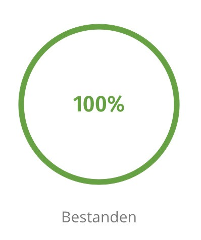Grafik 100 Prozent bestanden