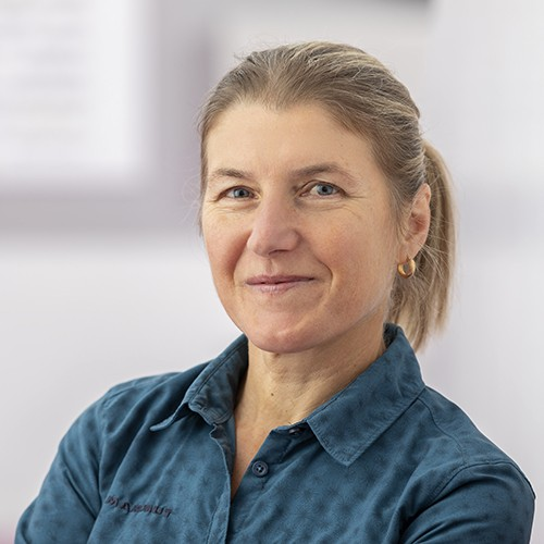 Ildiko Wermescher